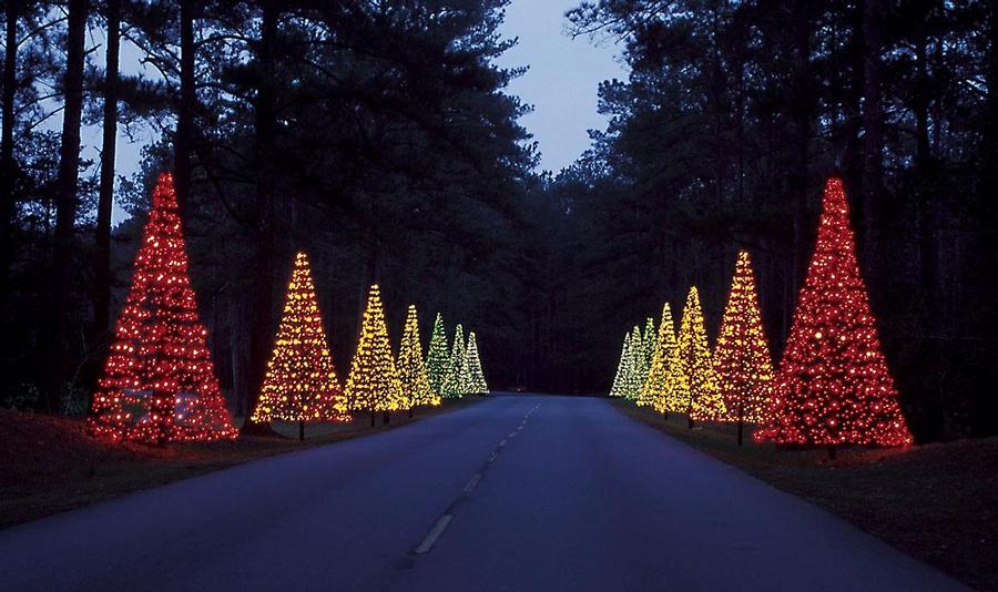Fantasy In Lights At Callaway Gardens Pine Mountain Ga Nov 14 2013