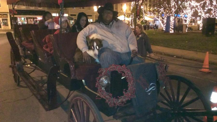 Bowling Green Free Horse Carriage Rides Bowling Green
